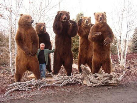 Bears_Standing.jpg