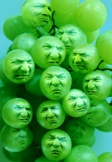 Grapes_Sour.jpg