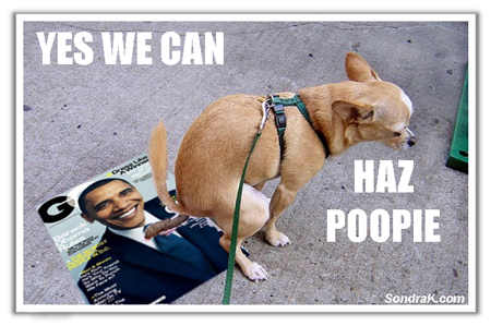 dog crap on obama