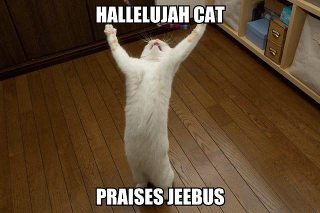 Nyan cat xD Hallelujah-cat-praises-jeebus